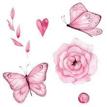 Set Pink Butterfly, Flower, Le...