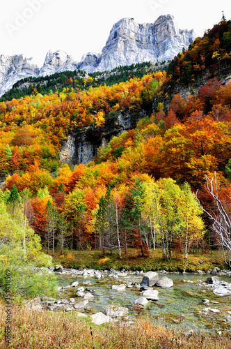 Photo Autumn colors in Ordesa Valley. Pyrenees, Aragón, Huesca, Spain