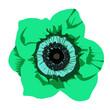 Leinwandbild Motiv Fiore color turchese verde smeraldo disegno sfondo bianco