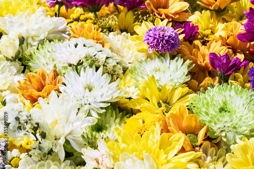 Fototapety, obrazy: Beautiful autumnal yellow flowers background. Colorful chrysanthemum flowers. Top view
