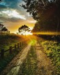 canvas print picture - Mesmerizing scenery of a sunset over road in fields
