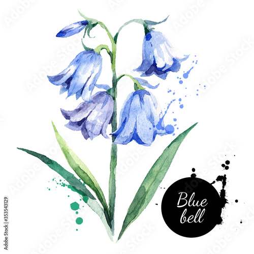 Hand drawn watercolor bluebell flower illustration Canvas Print