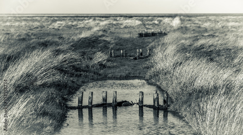 Tinted monochrome image of an old rush and grass covered fen drain in wide open Tablou Canvas