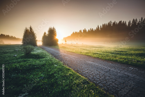 Idyllic misty pasture in the sunlight. Locations place Durmitor National park, Montenegro, Balkans, Europe. #353601783