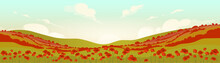 Tuscan Poppy Field At Sunrise ...