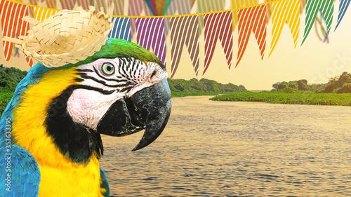 Fotografia Brazilian Festa Junina party concept at the nature