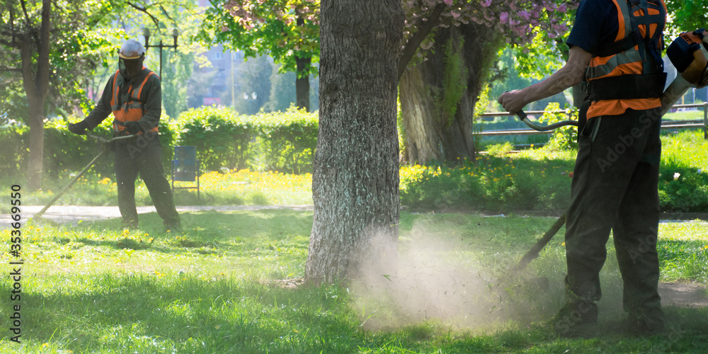 Fototapeta professional garden service at work. lawn care concept. cutting an mowing grass in the park. spring summer season