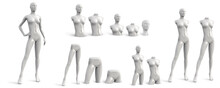Female Mannequin Of Different Parts. White Set. Three Quarter Front View. Vector Illustration Isolated On White Background.