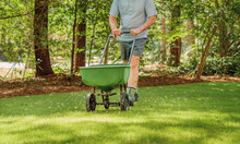 Man Fertilizing And Seeding Re...