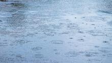 Rain Drops Frozen, Rain Drops Background, Wet