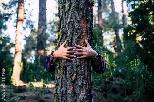 Man embracing tree in forest - 353719169