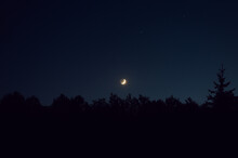 Moon Over Forest Landscape In Complete Darkness
