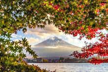 Fuji Mountain And Colourful Ma...