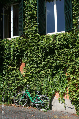 Cuadros en Lienzo Green windows, green ivies and a green bicycle