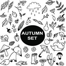 Set Of Vector Elements Autumn ...