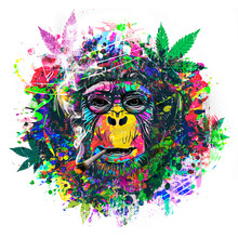 Abstract Colorful Monkey Background With Funny Face And Cannabis
