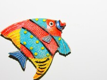 Colorful Fish Isolated On White