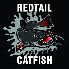 Cat Fish Logo Design Inspiration, Design Element For Logo, Poster, Card, Banner, Emblem, T Shirt. Vector Illustration