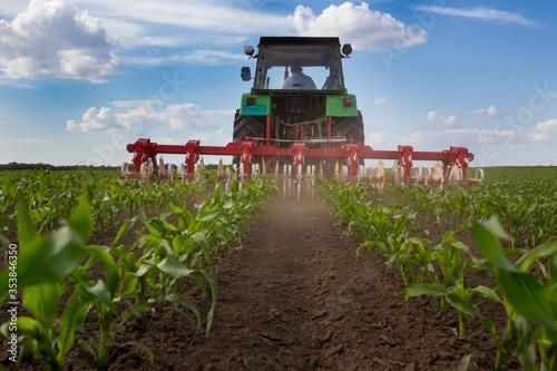 Obraz na plátně Tractor harrowing corn field