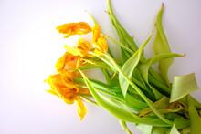 Dead Flowers - A Bouquet Of Dr...
