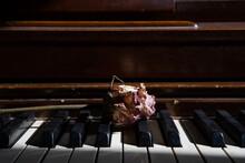 Old Dried Pink Rose On Keys Of...