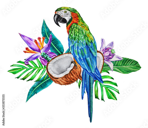 Stampa su Tela A bright macaw parrot sits on a botanical bouquet of tropical leaves, flowers and halves of coconut