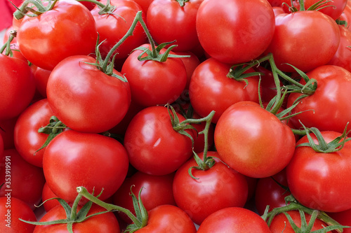 manojo de tomates rojos saludables