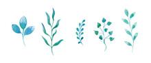 Watercolor Set Of Vegetable El...