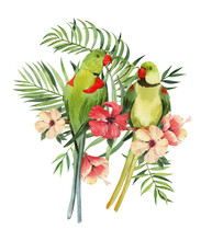 Print With Beautiful Watercolor Parrots And Tropical Leaves. Tropics. Realistic Tropical Leaves. Tropical Birds.