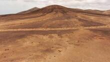 Strolling Allong Desert Trails...