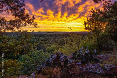 Fototapety, obrazy: Pride Rock Sunset