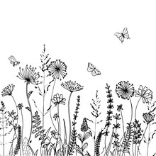 Black Silhouettes Of Grass, Spikes And Herbs Isolated On White Background. Hand Drawn Sketch Flowers And Bees. Coloring Book Page Design, Elements For Home Decor And Textile.