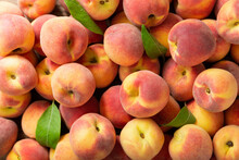 Fresh Peaches As Background, Top View