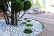 Leinwandbild Motiv Moss as an ornamental element in landscaping and garden design