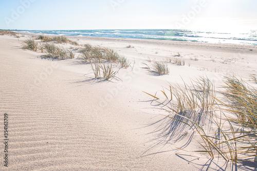 Fototapeta Słoneczna złota plaża wydmy w Polsce  obraz