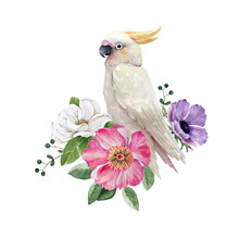White Cockatoo Parrot Bird In A Bouquet Of Flowers, Watercolor Illustration On White Background