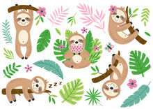 Set Of Isolated Funny Sloth An...