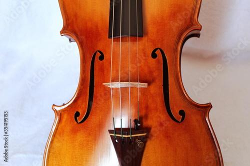 Viola Classica musical instrument gasparo da salò Canvas Print