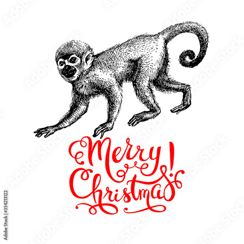 Obraz Hand drawn monkey animal vector illustration. Merry Christmas and Happy New Year card. Sketch isolated marmoset on white background - fototapety do salonu
