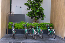 Bicycle Parking Near A Green T...