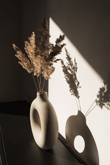 Dry pampas grass / reed in round vase. Shadows on the wall. Silhouette in sunlight