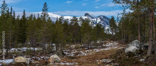 Szczyt górski w okolicy Hemsedal, góry skandynawskie