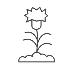 Carnation Thin Line Icon, Flor...