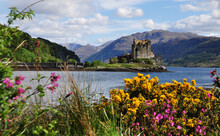 The View Of Eilean Donan Castle Through The Flowers And Shrubs. Scottish Highlands, The UK