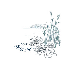 Water Lily Card Nature Landscape View Landscape Card Vector Sketch Illustration Japanese Chinese Oriental Line Art