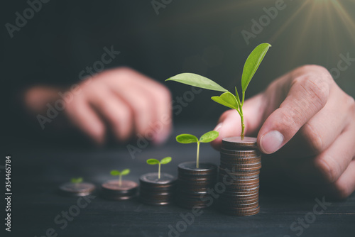 Fotografía Investor hand with coin and plant growing putting coins to stacking for money saving profit and business investment growth concept