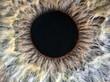 human yellow and grey eye extreme macro