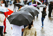 People With Umbrellas On A Rai...