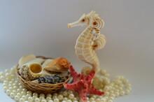 Sea horse On A White Bac...