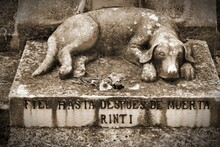 Dog Grave In Cuba. Sepia Toned...